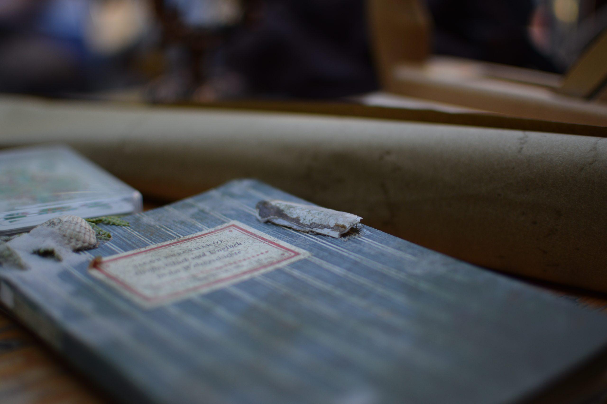 Blaues Buch, auf dem ein paar Muscheln liegen